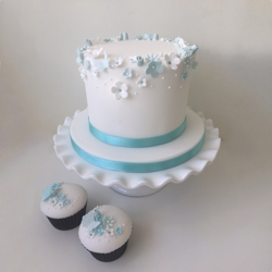 Introduction to Cake Decorating Class